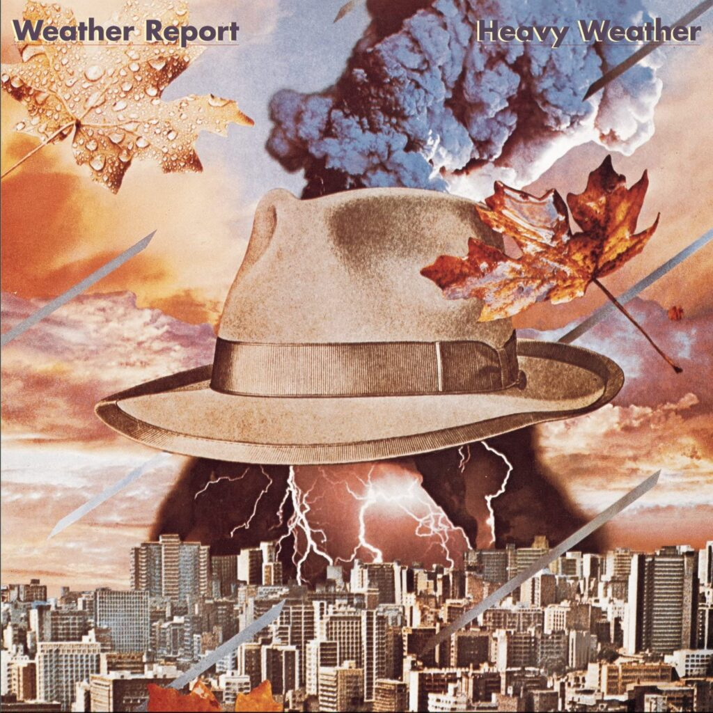 アウトドアガイドは、天気を何でチェックする?